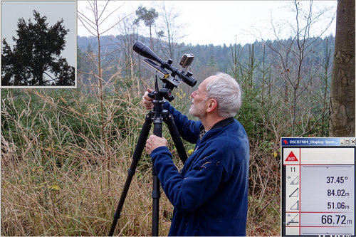 Sine-measuring the treetop of Bavarias tallest tree, with Leica Disto D8 and rifle scope, with no wind and at twilight <br />&lt;http://www.monumentaltrees.com/de/deu/bayern/aschaffenburg/6889_imkaltengrundabteilunglangruck/13867/&gt;