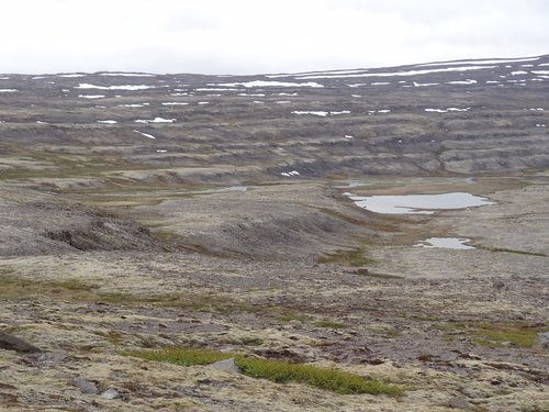 Climbing back up to alpine and beyond, snow had just left by mid-June, a barren landscape formed of successive layers of lava flows, scoured by glacial activity, grasses and sedges making their stands where they can...