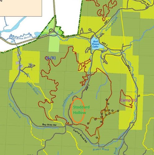"Red outlines indicate the sections of old growth forest. ""Big Basin"" itself is bounded by Bay State Road, Frances Brook Road, and ASP 2."
